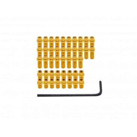 DMR Pin Kit Vault gold