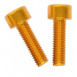 Viti per Portaborraccia Oro (2 pezzi)