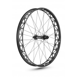 Ruota posteriore 26 DT Swiss BR 2250 Classic Fatbike Disc CL 12/197mm TA Shimano