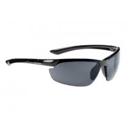 Occhiali Alpina Draff nero