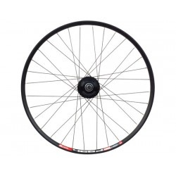 Ruota anteriore 29 Shimano Custom Made FW Alfine DH-S501 with DT 466 D